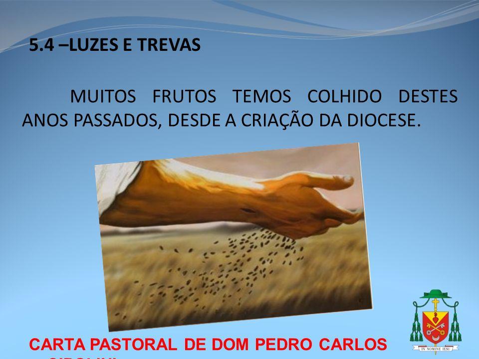 CARTA PASTORAL DE DOM PEDRO CARLOS CIPOLINI 5.4 –LUZES E TREVAS MUITOS FRUTOS TEMOS COLHIDO DESTES ANOS PASSADOS, DESDE A CRIAÇÃO DA DIOCESE.