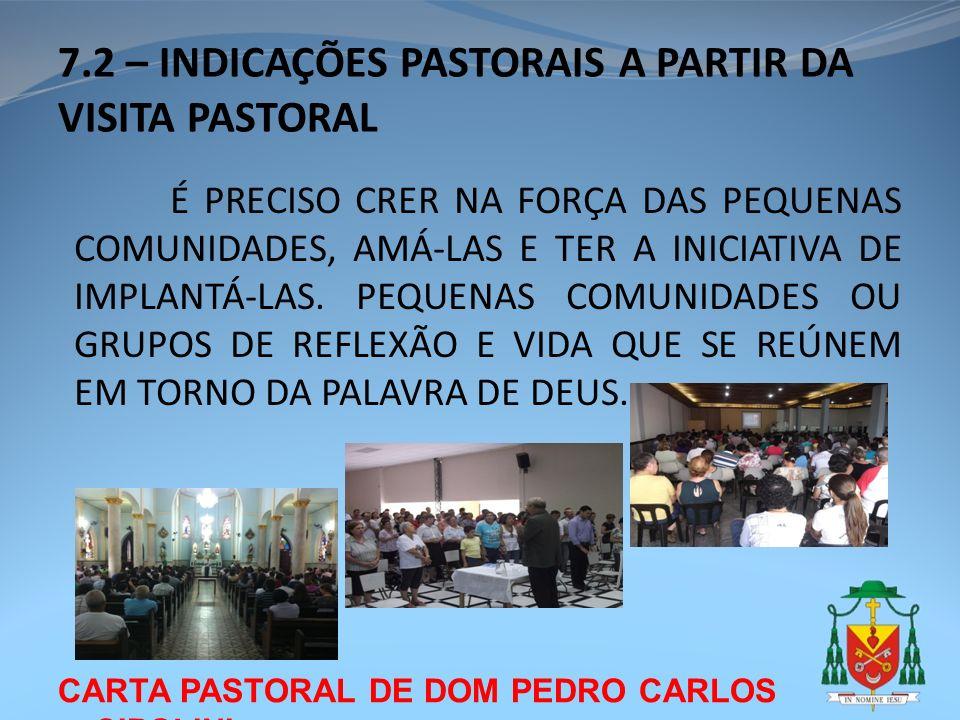CARTA PASTORAL DE DOM PEDRO CARLOS CIPOLINI 7.2 – INDICAÇÕES PASTORAIS A PARTIR DA VISITA PASTORAL É PRECISO CRER NA FORÇA DAS PEQUENAS COMUNIDADES, A