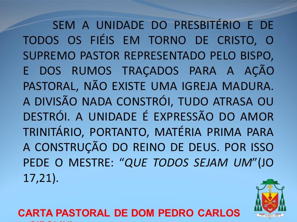 CARTA PASTORAL DE DOM PEDRO CARLOS CIPOLINI 7.2 – INDICAÇÕES PASTORAIS A PARTIR DA VISITA PASTORAL É PRECISO CRER NA FORÇA DAS PEQUENAS COMUNIDADES, AMÁ-LAS E TER A INICIATIVA DE IMPLANTÁ-LAS.