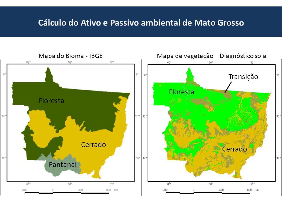 Cálculo do Ativo e Passivo ambiental de Mato Grosso Mapa do Bioma - IBGEMapa de vegetação – Diagnóstico soja Floresta Cerrado Pantanal Floresta Cerrado Transição
