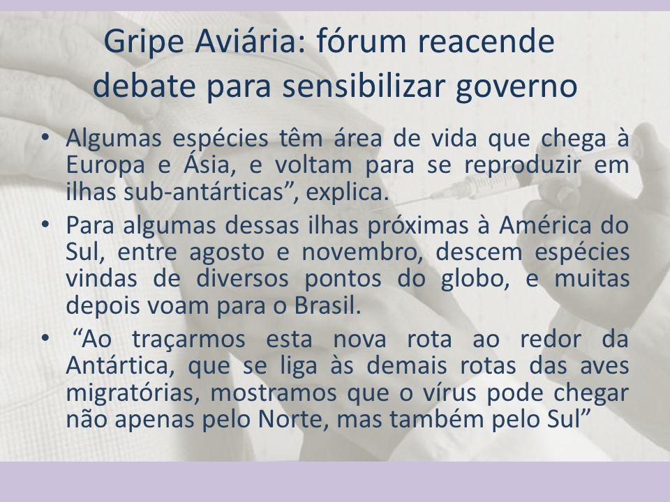 Gripe Aviária: fórum reacende debate para sensibilizar governo Algumas espécies têm área de vida que chega à Europa e Ásia, e voltam para se reproduzi