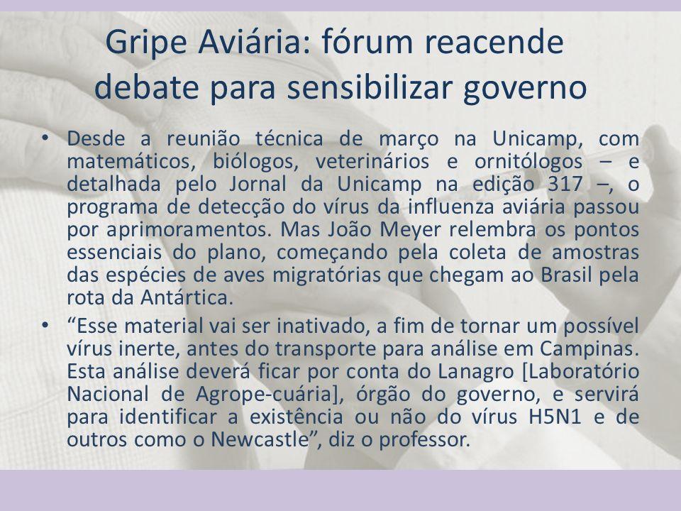 Gripe Aviária: fórum reacende debate para sensibilizar governo Desde a reunião técnica de março na Unicamp, com matemáticos, biólogos, veterinários e