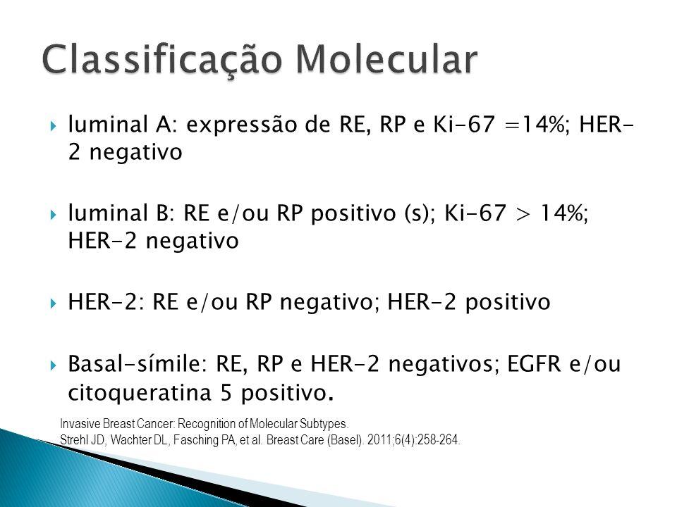 luminal A: expressão de RE, RP e Ki-67 =14%; HER- 2 negativo luminal B: RE e/ou RP positivo (s); Ki-67 > 14%; HER-2 negativo HER-2: RE e/ou RP negativ