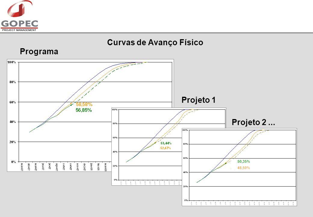 Curvas de Avanço Físico Programa Projeto 1 Projeto 2... 50,35% 48,50%
