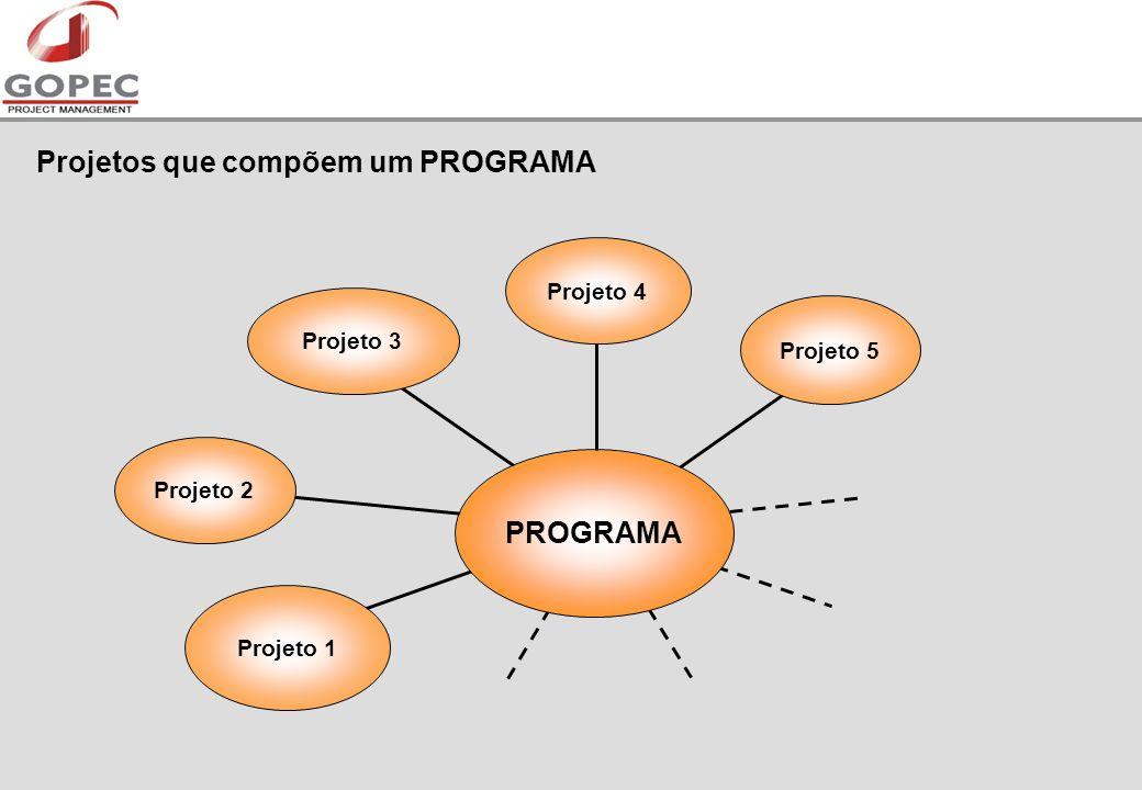 Projetos que compõem um PROGRAMA Projeto 2 Projeto 1 Projeto 3Projeto 4 Projeto 5 PROGRAMA
