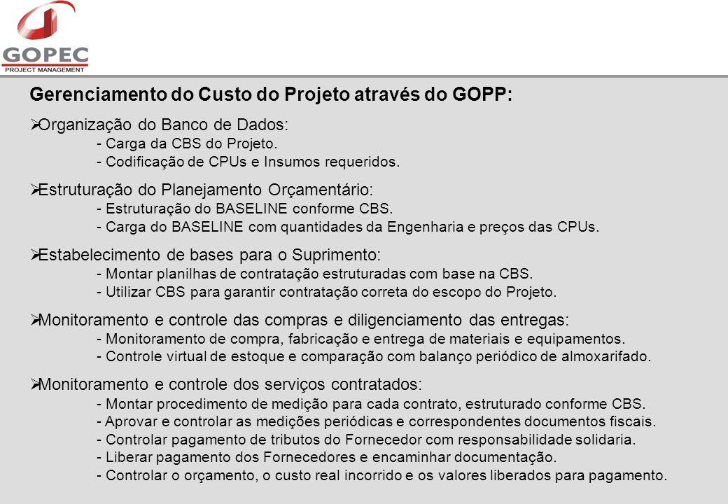 Gerenciamento do Custo do Projeto através do GOPP: Organização do Banco de Dados: - Carga da CBS do Projeto.