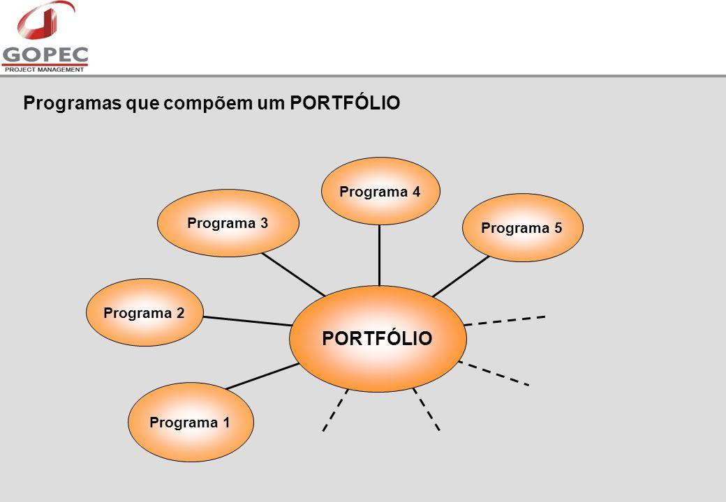 Programas que compõem um PORTFÓLIO Programa 2 Programa 1 Programa 3Programa 4 Programa 5 PORTFÓLIO