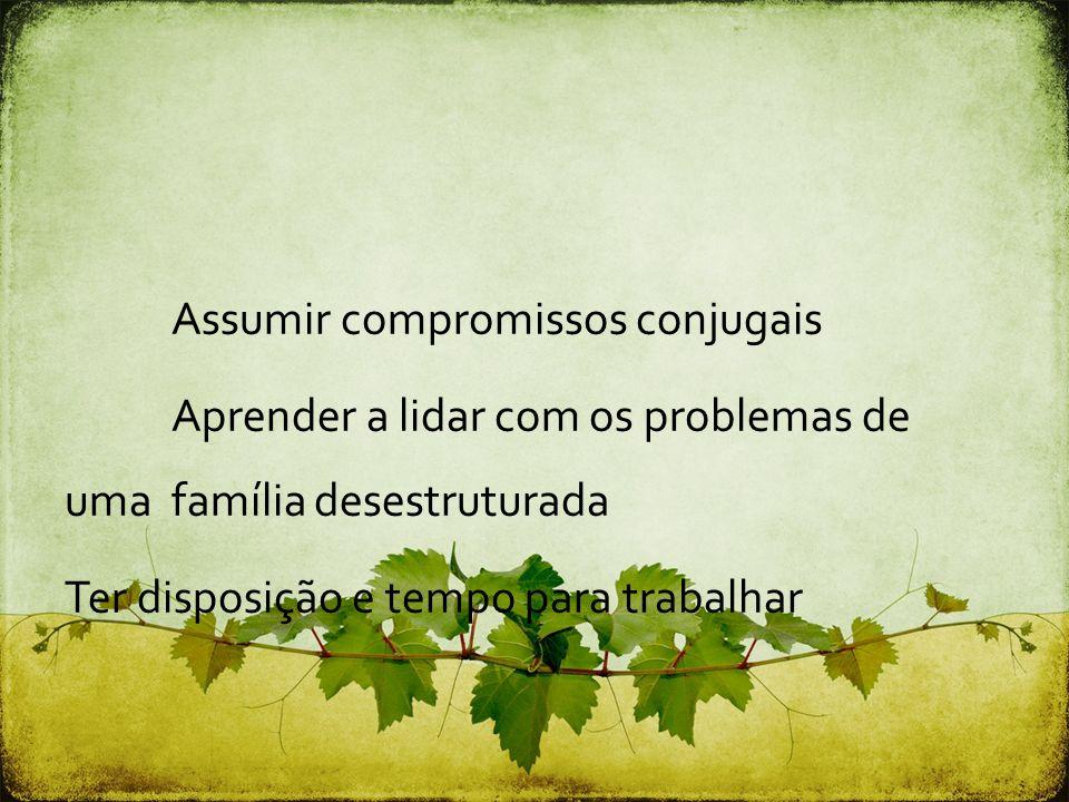 Assumir compromissos conjugais Aprender a lidar com os problemas de uma família desestruturada Ter disposição e tempo para trabalhar