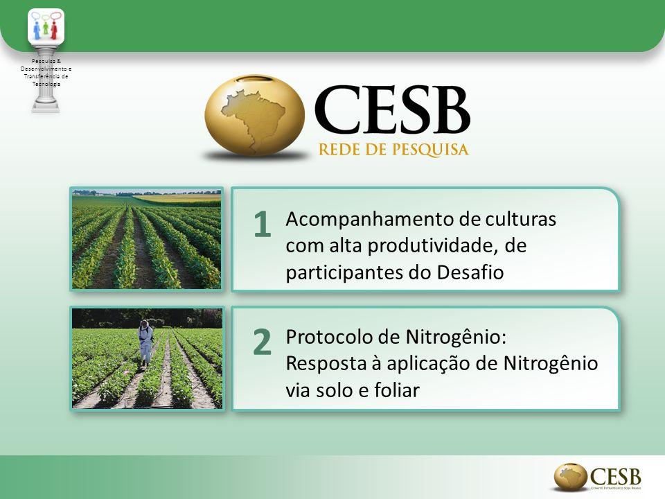 Acompanhamento de culturas com alta produtividade, de participantes do Desafio 1 Protocolo de Nitrogênio: Resposta à aplicação de Nitrogênio via solo e foliar 2 Pesquisa & Desenvolvimento e Transferência de Tecnologia