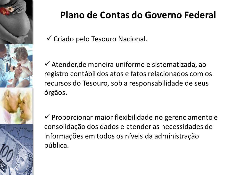 Plano de Contas do Governo Federal Criado pelo Tesouro Nacional.