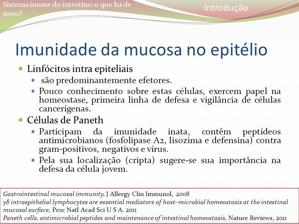 Sistema imune do intestino: o que há de novo? Imunidade da mucosa no epitélio Linfócitos intra epiteliais são predominantemente efetores. Pouco conhec