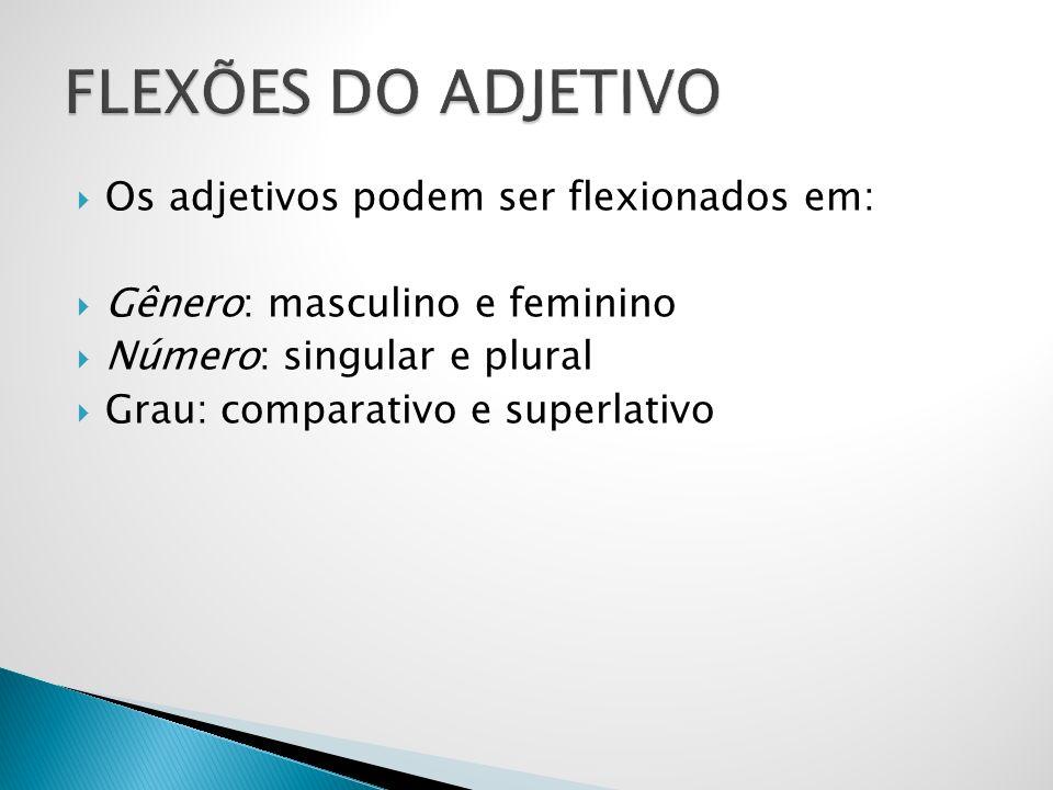 Os adjetivos podem ser flexionados em: Gênero: masculino e feminino Número: singular e plural Grau: comparativo e superlativo