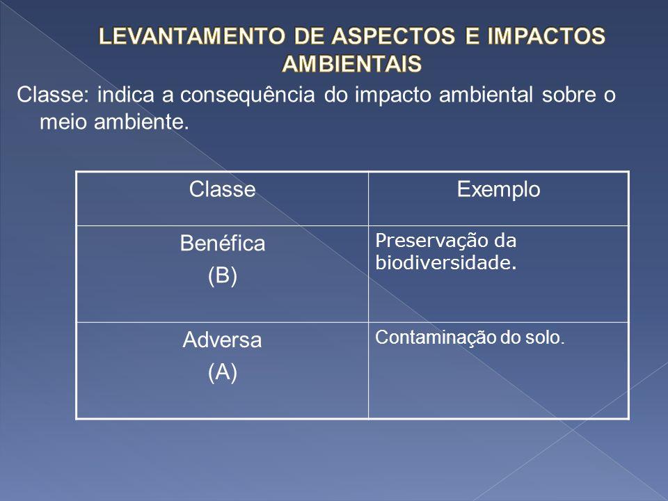 Classe: indica a consequência do impacto ambiental sobre o meio ambiente. ClasseExemplo Benéfica (B) Preservação da biodiversidade. Adversa (A) Contam