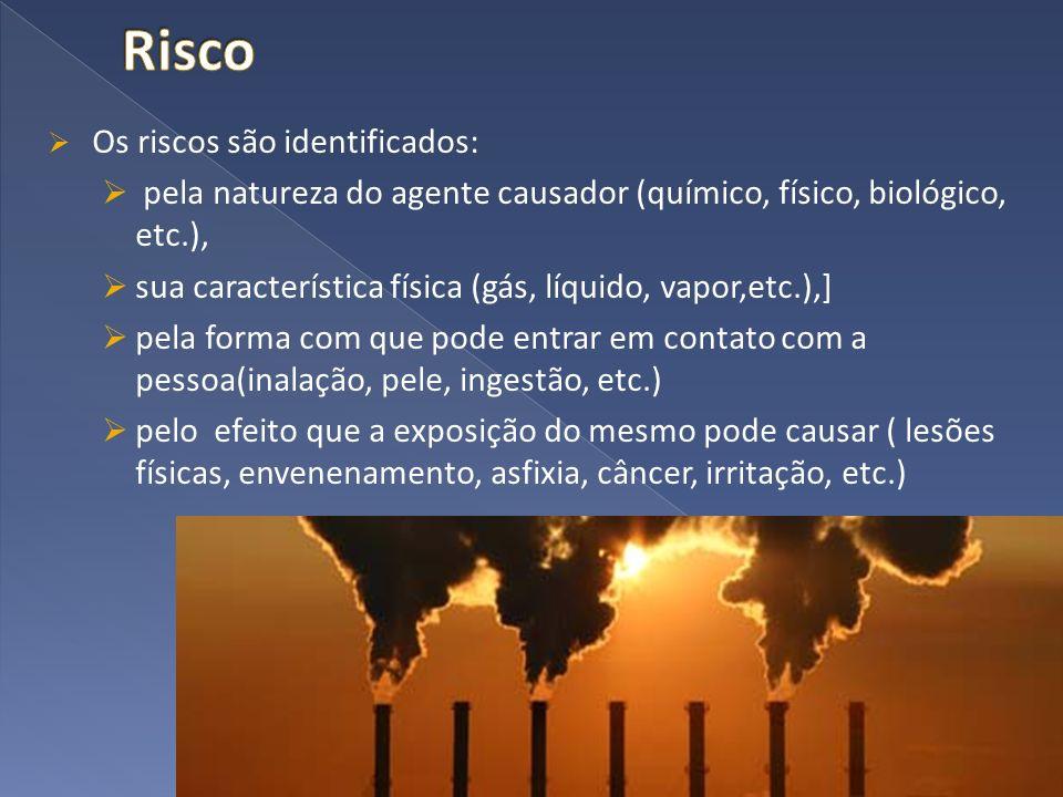 Os riscos são identificados: pela natureza do agente causador (químico, físico, biológico, etc.), sua característica física (gás, líquido, vapor,etc.)