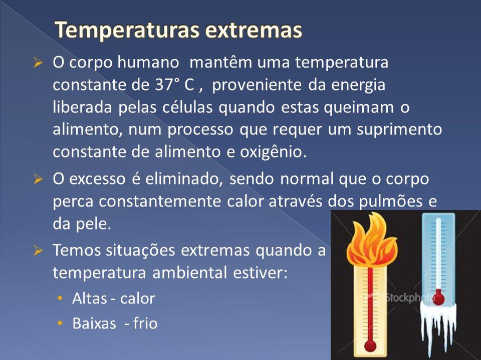O corpo humano mantêm uma temperatura constante de 37° C, proveniente da energia liberada pelas células quando estas queimam o alimento, num processo