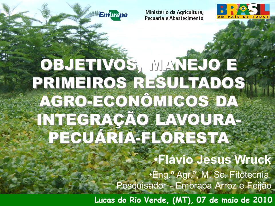 RESULTADOS TÉCNICO E ECONÔMICO DO 1 O ANO AGRÍCOLA (2009-10):