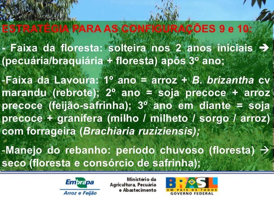 ESTRATÉGIA PARA AS CONFIGURAÇÕES 9 e 10: - Faixa da floresta: solteira nos 2 anos iniciais (pecuária/braquiária + floresta) após 3 o ano; -Faixa da La