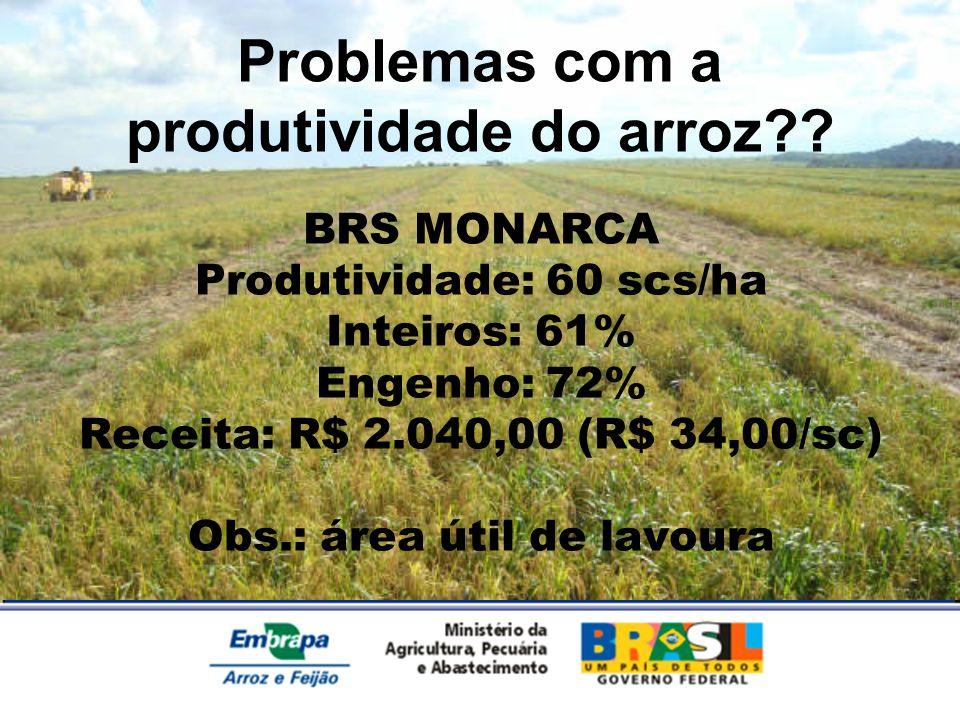 BRS MONARCA Produtividade: 60 scs/ha Inteiros: 61% Engenho: 72% Receita: R$ 2.040,00 (R$ 34,00/sc) Obs.: área útil de lavoura Problemas com a produtiv