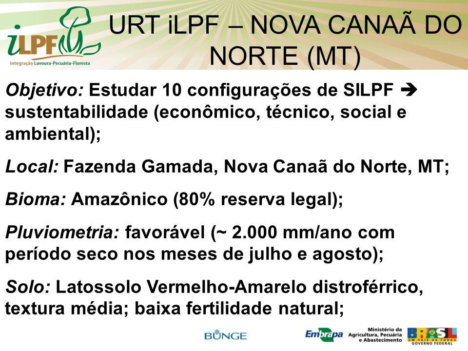 URT iLPF – NOVA CANAÃ DO NORTE (MT) Objetivo: Estudar 10 configurações de SILPF sustentabilidade (econômico, técnico, social e ambiental); Local: Faze