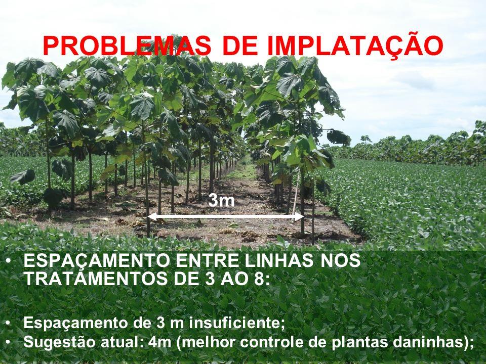 PROBLEMAS DE IMPLATAÇÃO ESPAÇAMENTO ENTRE LINHAS NOS TRATAMENTOS DE 3 AO 8: Espaçamento de 3 m insuficiente; Sugestão atual: 4m (melhor controle de pl