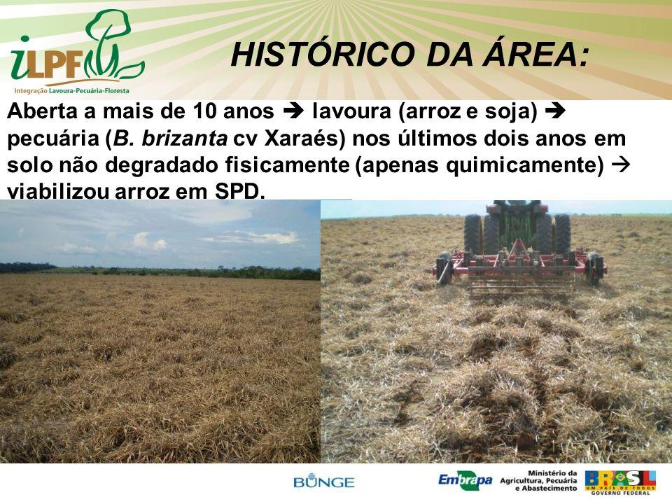 HISTÓRICO DA ÁREA: Aberta a mais de 10 anos lavoura (arroz e soja) pecuária (B. brizanta cv Xaraés) nos últimos dois anos em solo não degradado fisica