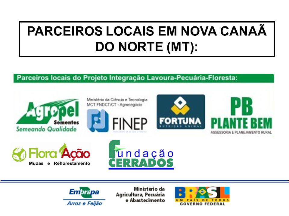 PARCEIROS LOCAIS EM NOVA CANAÃ DO NORTE (MT):