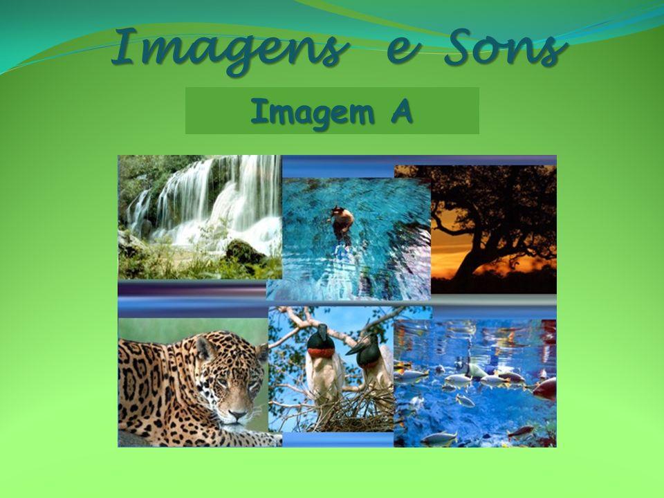 Imagens e Sons Imagem A