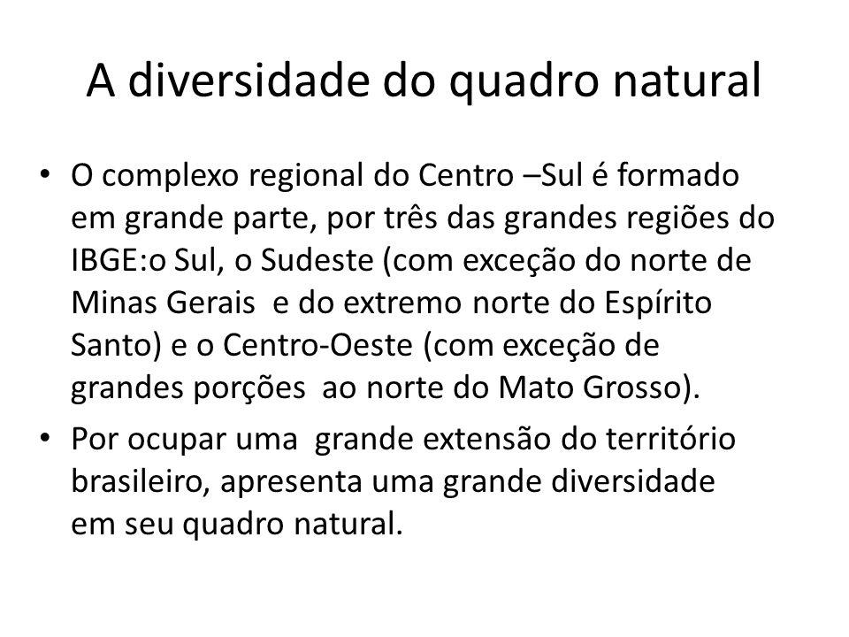 A diversidade do quadro natural O complexo regional do Centro –Sul é formado em grande parte, por três das grandes regiões do IBGE:o Sul, o Sudeste (c