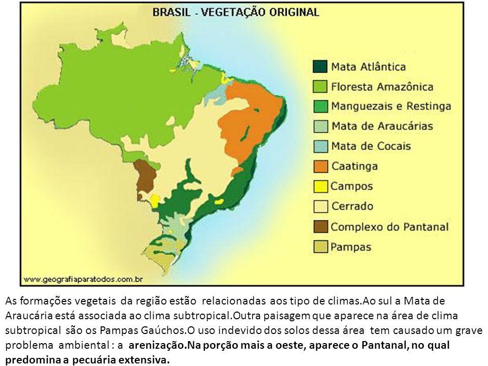 As formações vegetais da região estão relacionadas aos tipo de climas.Ao sul a Mata de Araucária está associada ao clima subtropical.Outra paisagem qu