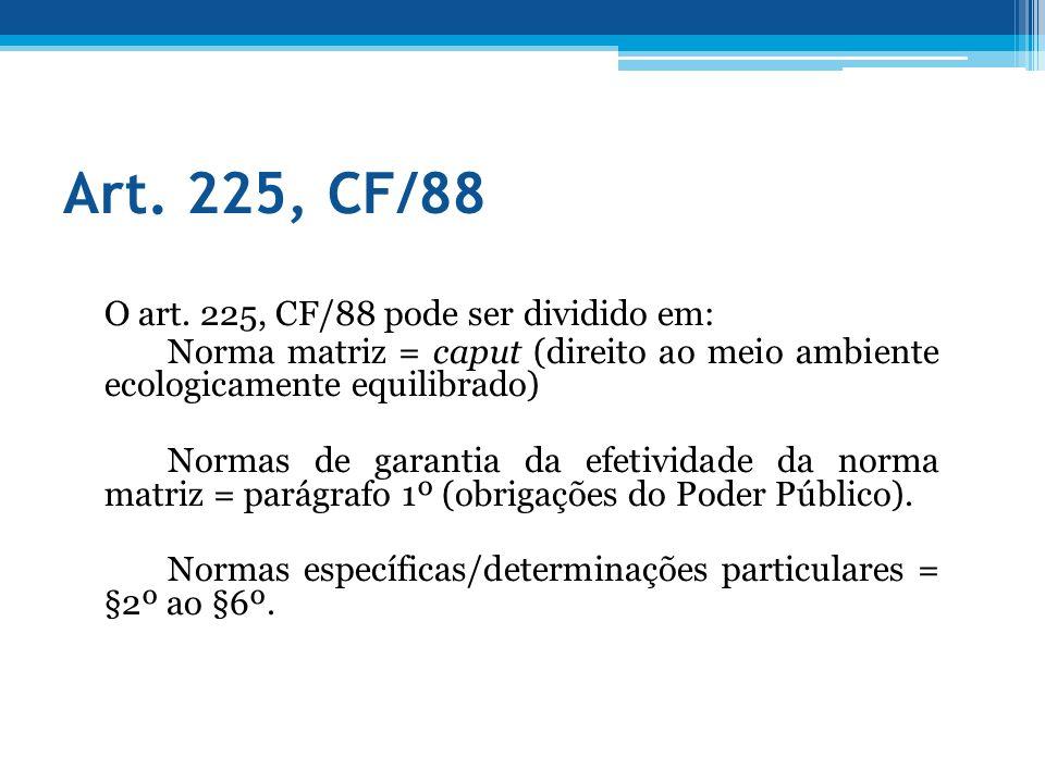 Art. 225, CF/88 O art. 225, CF/88 pode ser dividido em: Norma matriz = caput (direito ao meio ambiente ecologicamente equilibrado) Normas de garantia