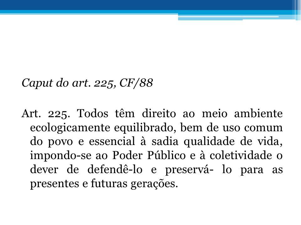Caput do art.225, CF/88 Art. 225.