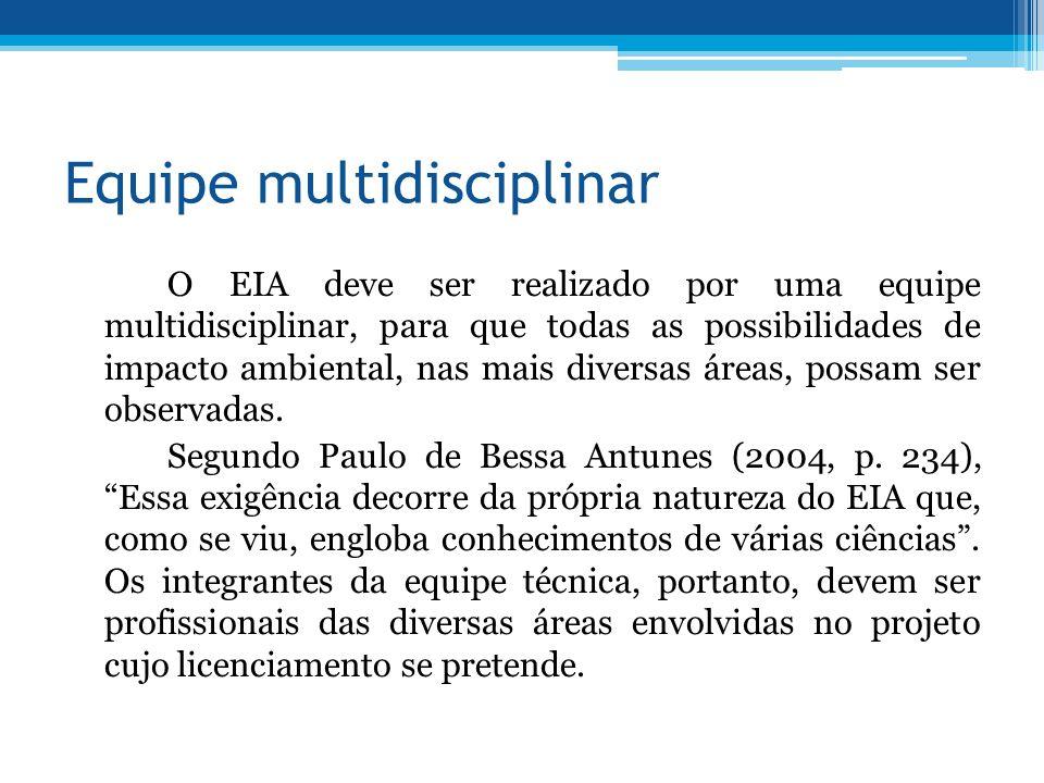 Equipe multidisciplinar O EIA deve ser realizado por uma equipe multidisciplinar, para que todas as possibilidades de impacto ambiental, nas mais diversas áreas, possam ser observadas.