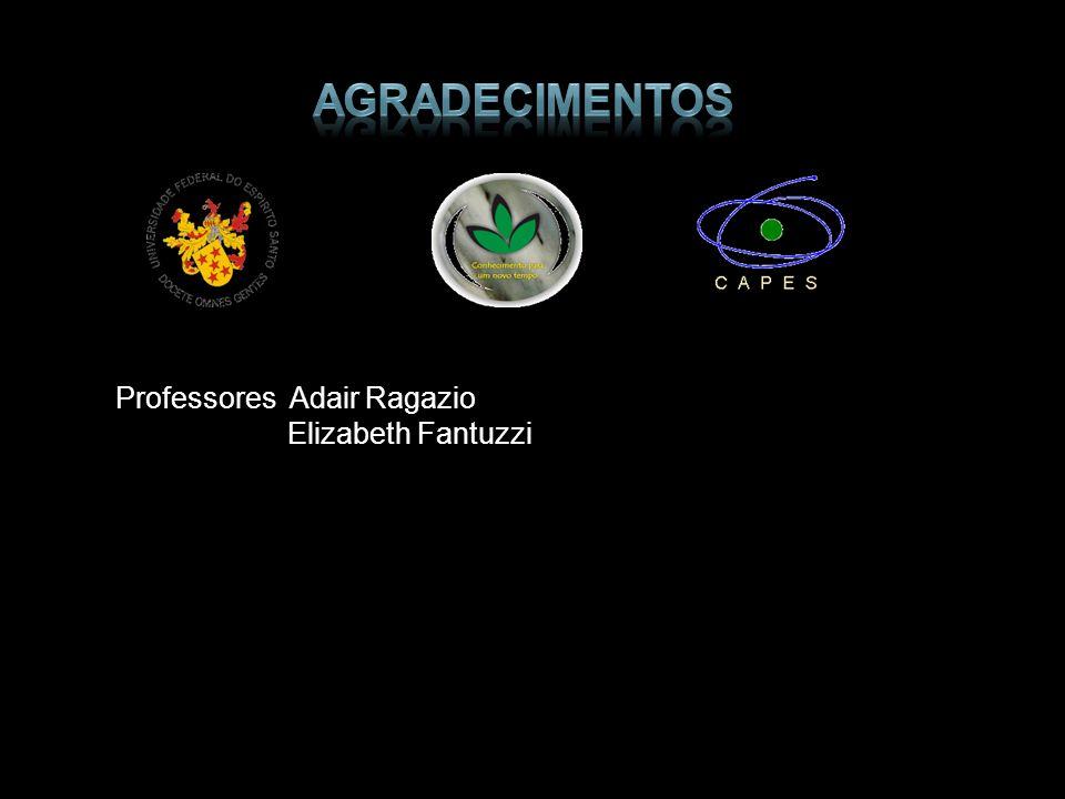 Professores Adair Ragazio Elizabeth Fantuzzi