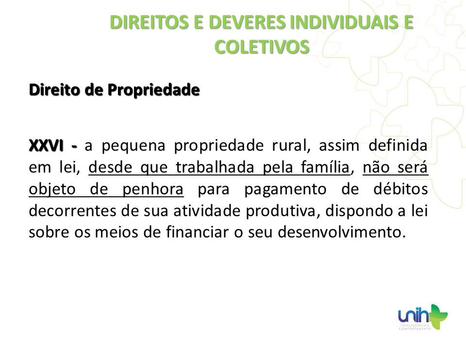 Direito de Propriedade XXVI - XXVI - a pequena propriedade rural, assim definida em lei, desde que trabalhada pela família, não será objeto de penhora