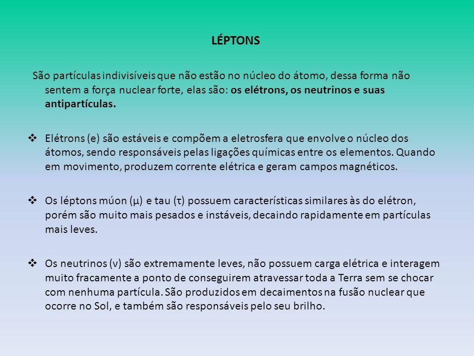 LÉPTONS São partículas indivisíveis que não estão no núcleo do átomo, dessa forma não sentem a força nuclear forte, elas são: os elétrons, os neutrinos e suas antipartículas.