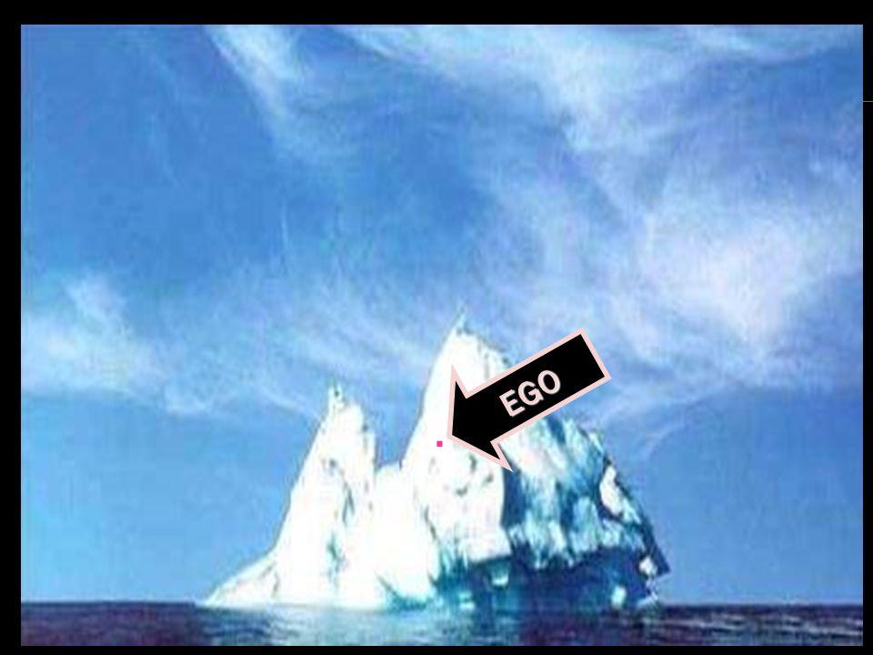 Psicologia Profunda EGO.