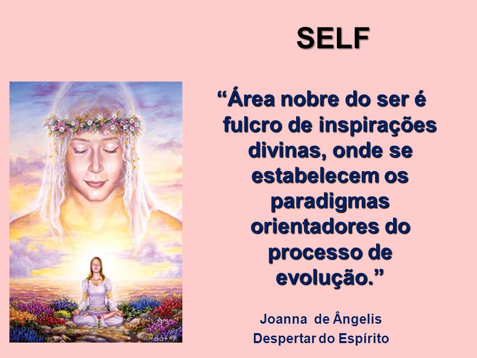 Área nobre do ser é fulcro de inspirações divinas, onde se estabelecem os paradigmas orientadores do processo de evolução. Joanna de Ângelis Despertar