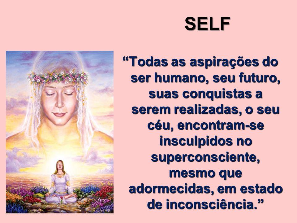 Todas as aspirações do ser humano, seu futuro, suas conquistas a serem realizadas, o seu céu, encontram-se insculpidos no superconsciente, mesmo que adormecidas, em estado de inconsciência.