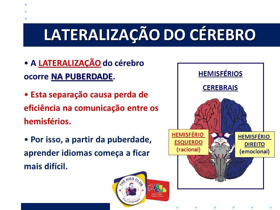 LATERALIZAÇÃO DO CÉREBRO HEMISFÉRIOS CEREBRAIS NA PUBERDADE A LATERALIZAÇÃO do cérebro ocorre NA PUBERDADE.