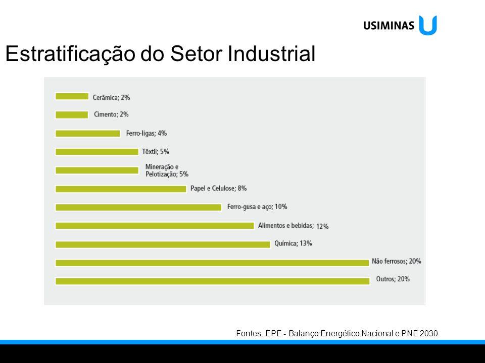 Estratificação do Setor Industrial Fontes: EPE - Balanço Energético Nacional e PNE 2030