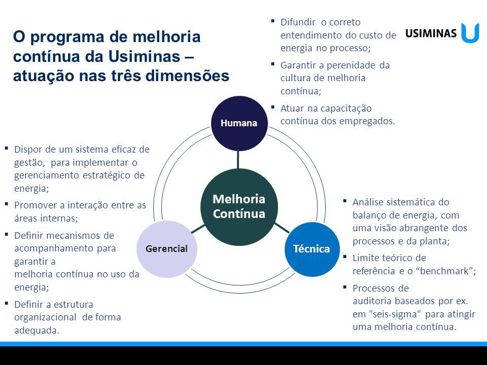 Dispor de um sistema eficaz de gestão, para implementar o gerenciamento estratégico de energia; Promover a interação entre as áreas internas; Definir