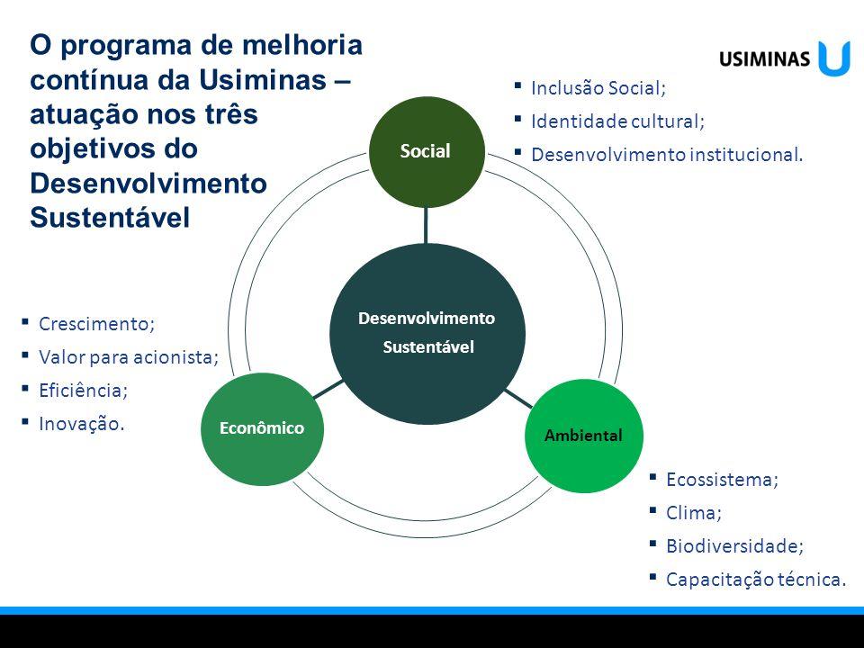Desenvolvimento Sustentável Social Ambiental Econômico Ecossistema; Clima; Biodiversidade; Capacitação técnica. Inclusão Social; Identidade cultural;