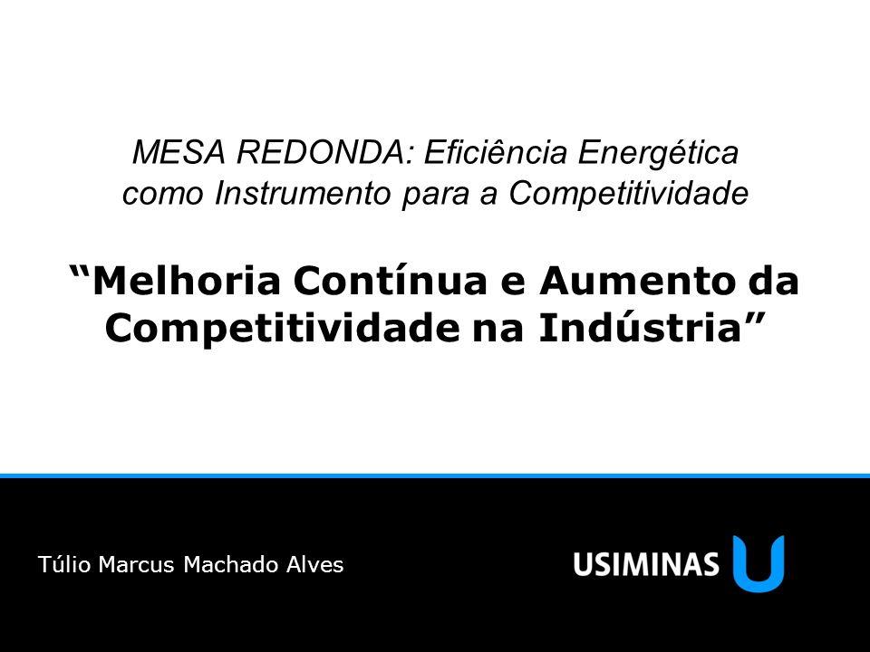 MESA REDONDA: Eficiência Energética como Instrumento para a Competitividade Melhoria Contínua e Aumento da Competitividade na Indústria Túlio Marcus M
