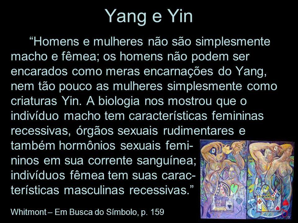 Yang e Yin Homens e mulheres não são simplesmente macho e fêmea; os homens não podem ser encarados como meras encarnações do Yang, nem tão pouco as mu
