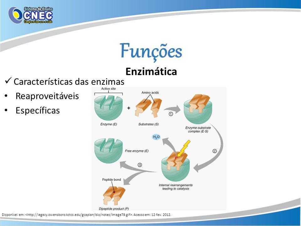 Funções Disponível em:. Acesso em: 12 fev. 2012. Características das enzimas Específicas Reaproveitáveis Enzimática