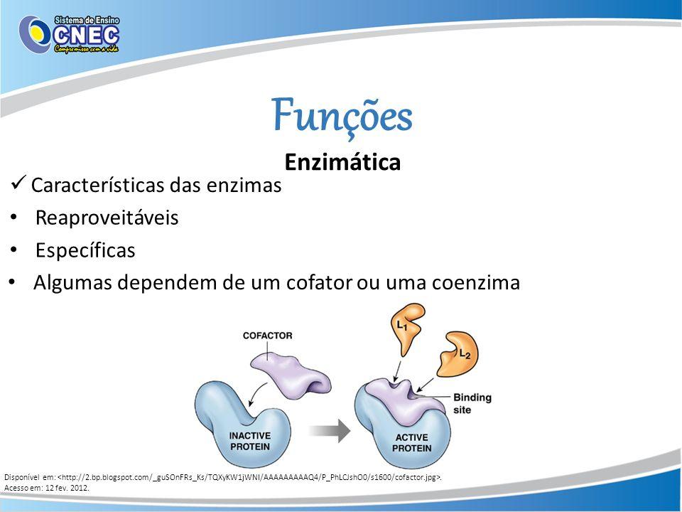 Funções Enzimática Disponível em:. Acesso em: 12 fev. 2012. Características das enzimas Específicas Reaproveitáveis Algumas dependem de um cofator ou