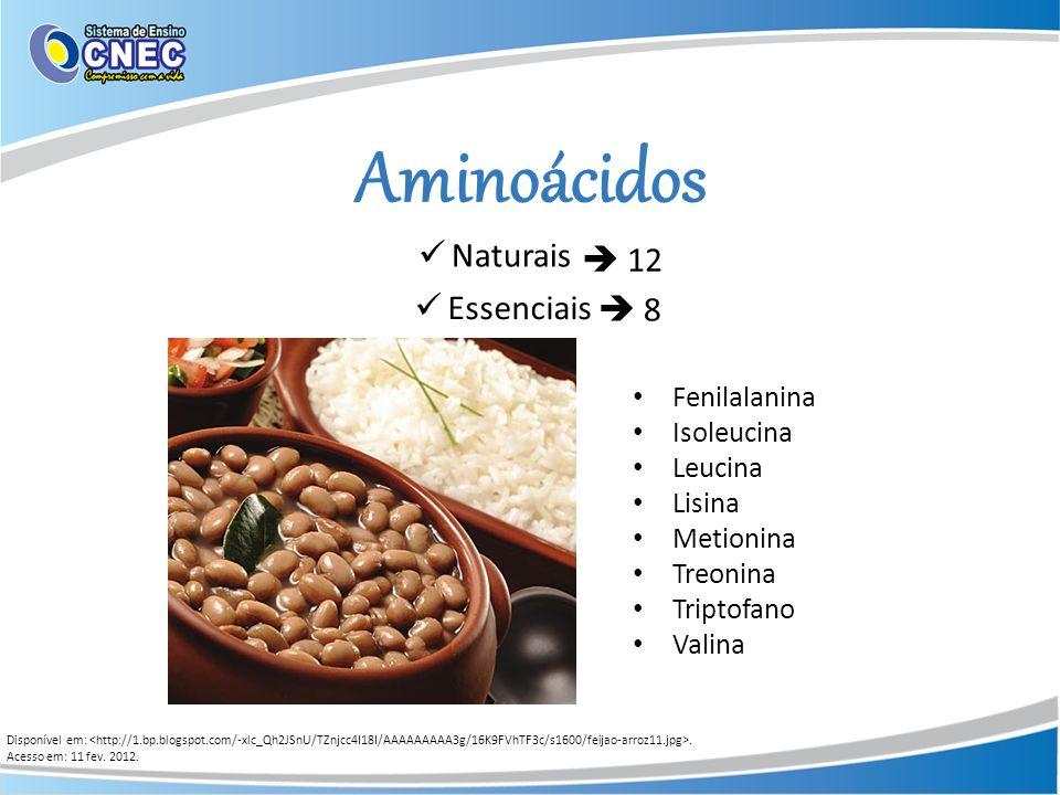 Aminoácidos Disponível em:. Acesso em: 11 fev. 2012. 8 Essenciais Naturais 12 Fenilalanina Isoleucina Leucina Lisina Metionina Treonina Triptofano Val