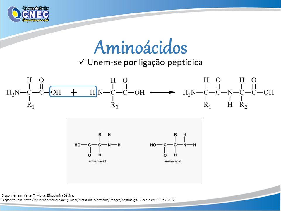 Aminoácidos Disponível em: Valter T. Motta. Bioquímica Básica. Disponível em:. Acesso em: 21 fev. 2012. Unem-se por ligação peptídica