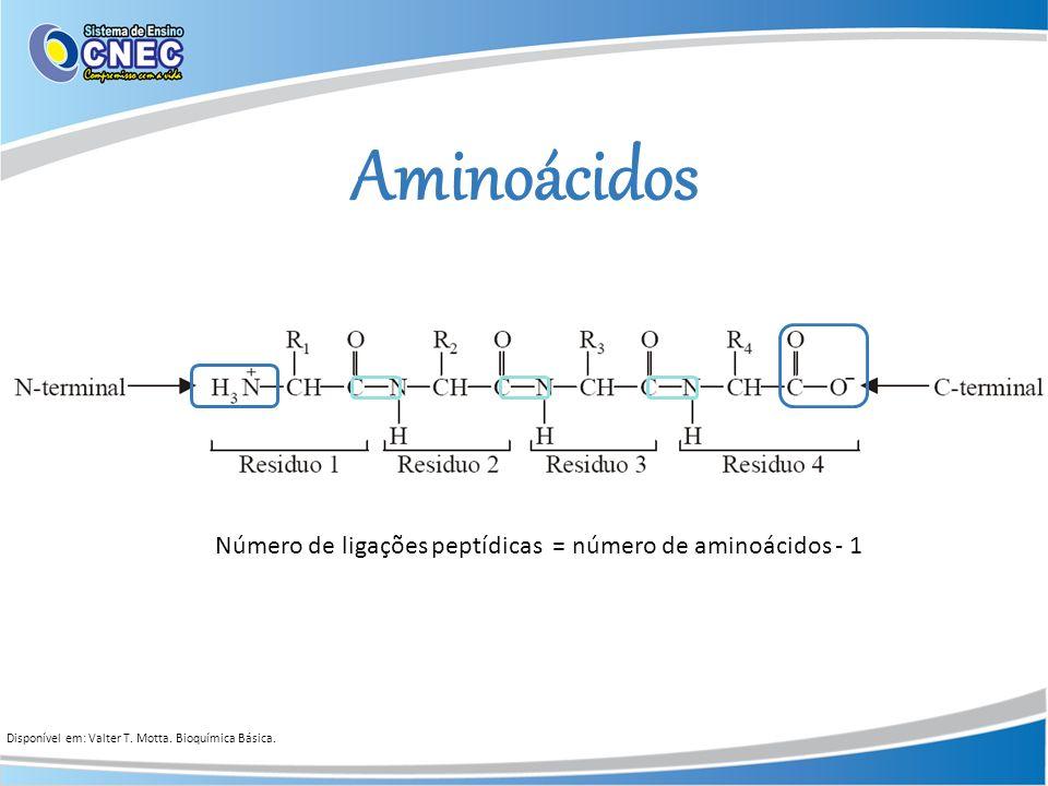Aminoácidos Disponível em: Valter T. Motta. Bioquímica Básica. Número de ligações peptídicas = número de aminoácidos - 1