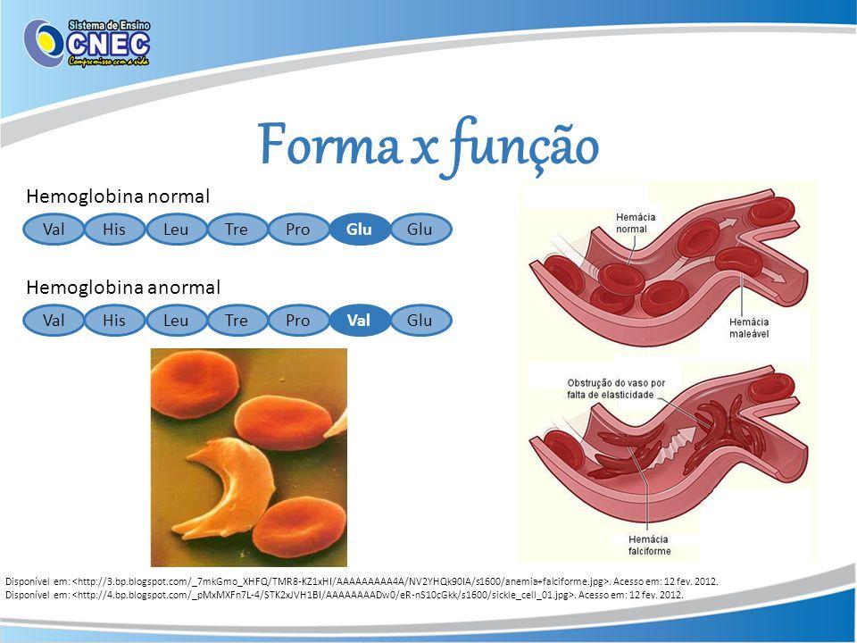 Tipos de proteínas Fibrosas: apresentam estrutura alongada.